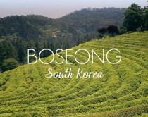 Weekend Getaway - Boseong
