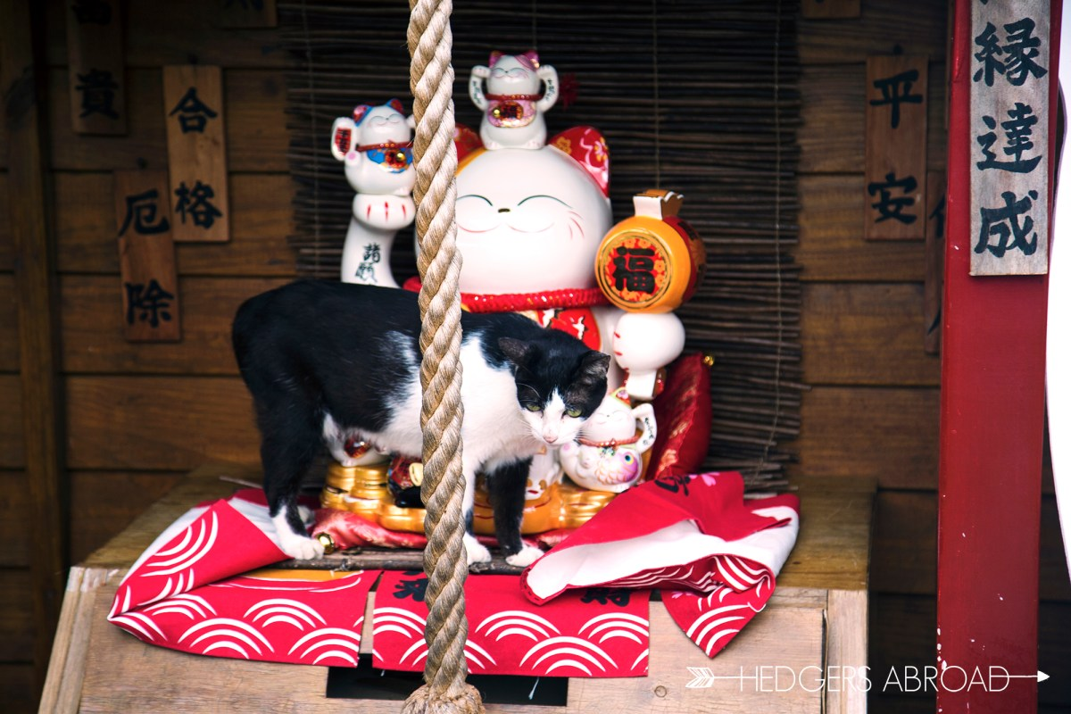 Charming Way to Get Spirited Away in Jiufen
