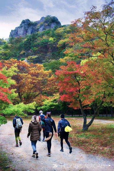 KOREA // Hiking Naejansan Nation Park