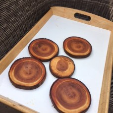 Wood slices for crafting!