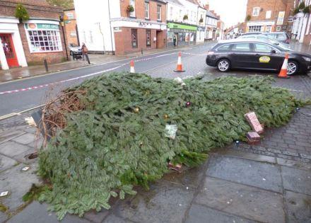Christmas Tree fallen over 4
