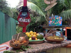 Tropical Garden Produce at our Eco-Tourist Farm in Hawaii