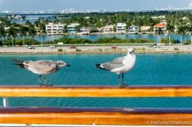 Aventura-Dance-Cruise-9