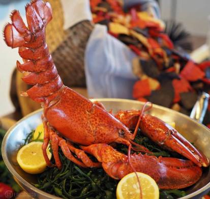 Paddlefish Orlando September Events - National Lobster Day