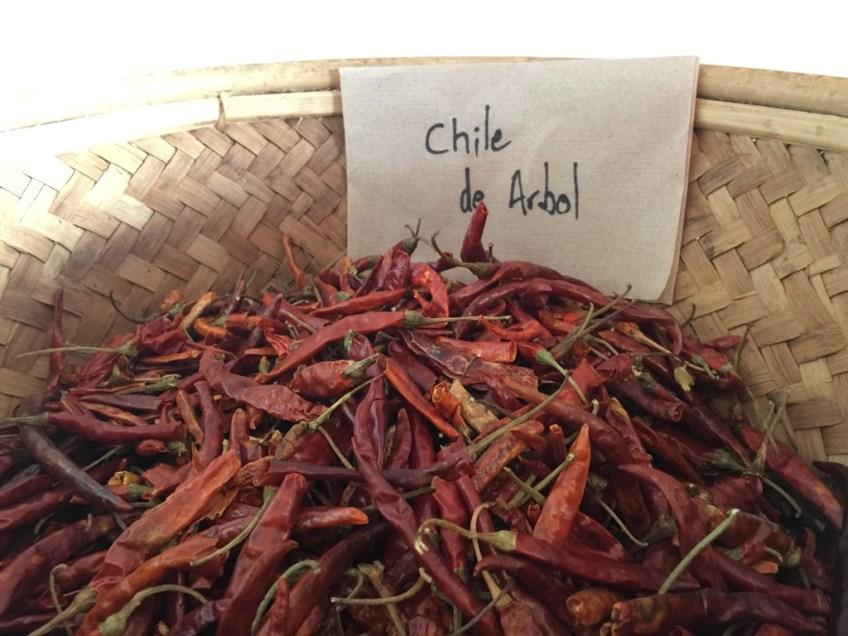 Palikao chilis 2