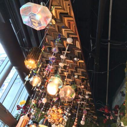 LaMuse Café Ceiling