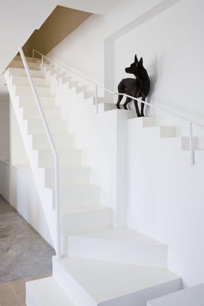 Dvojno stopnišče