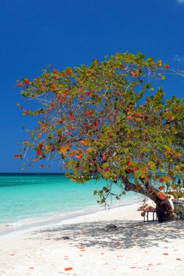 8. Seven Mile Beach, Negril, Jamajka