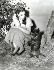 Judy Garland with Toto, The Wizard of Oz, 1939
