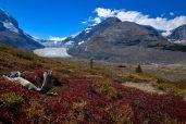 © Dirk Ernst,Foto Reise Kanadische Rockies