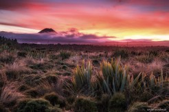 © Andre Wandrei, Foto Reise Neuseeland