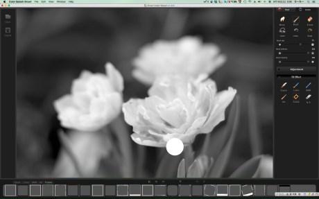 Color Splash SmartScreenSnapz001