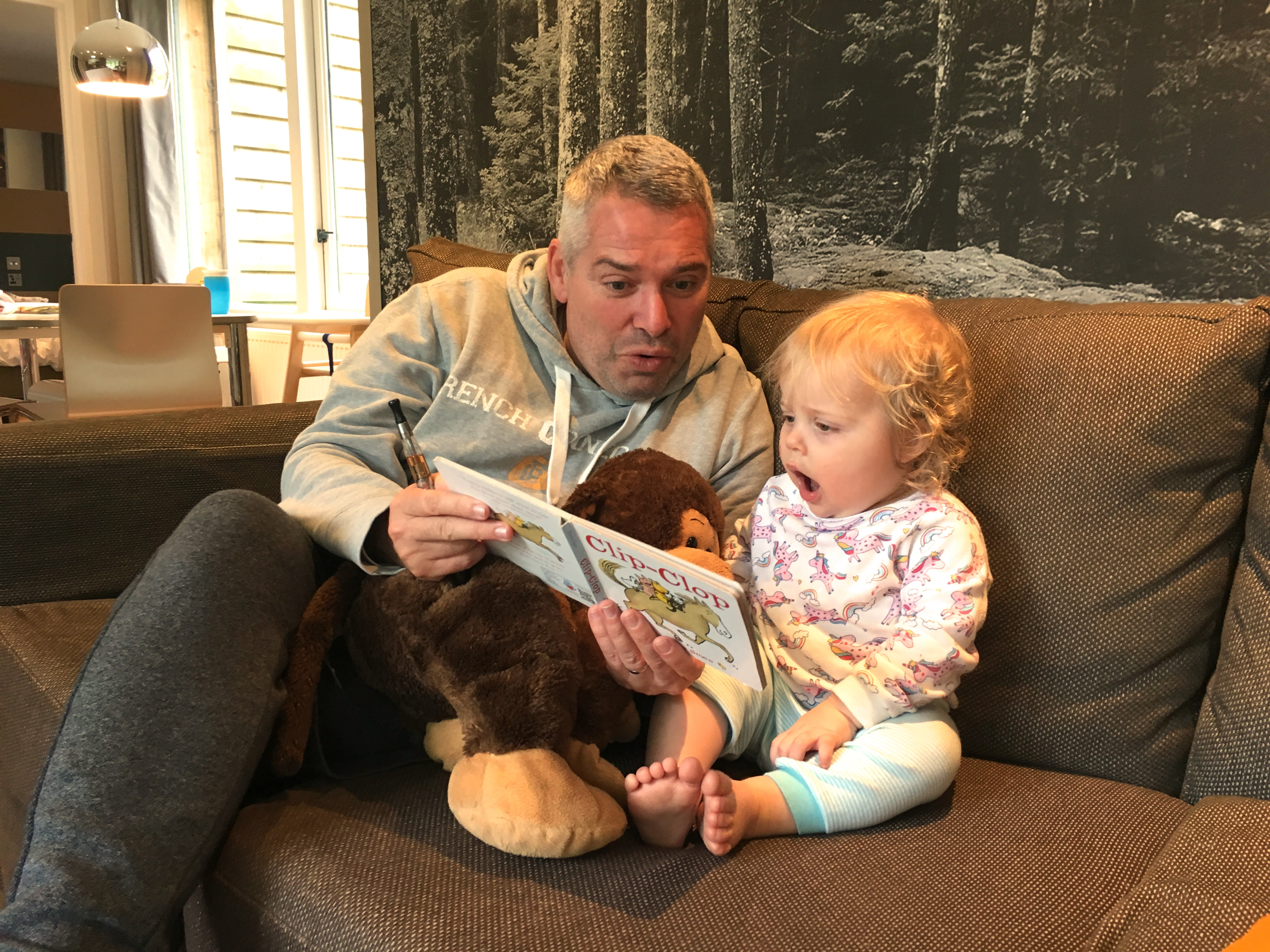 14 months old girl sitting on sofa, reading with father