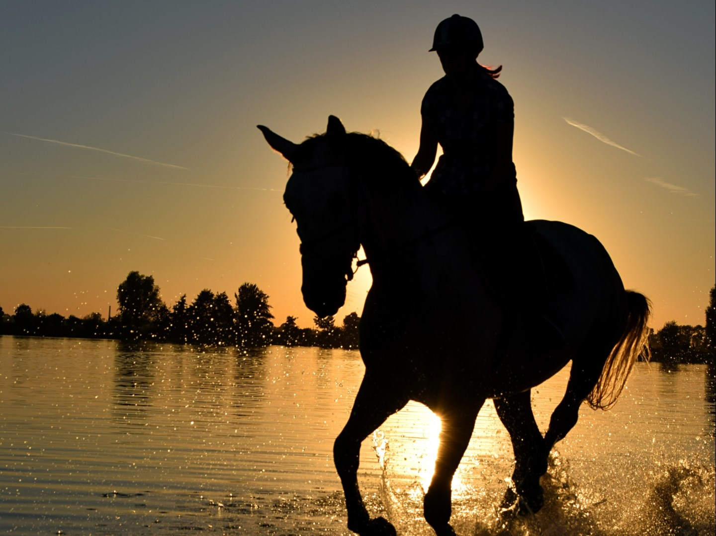 horse and rider silhouette against sunset beach backdrop