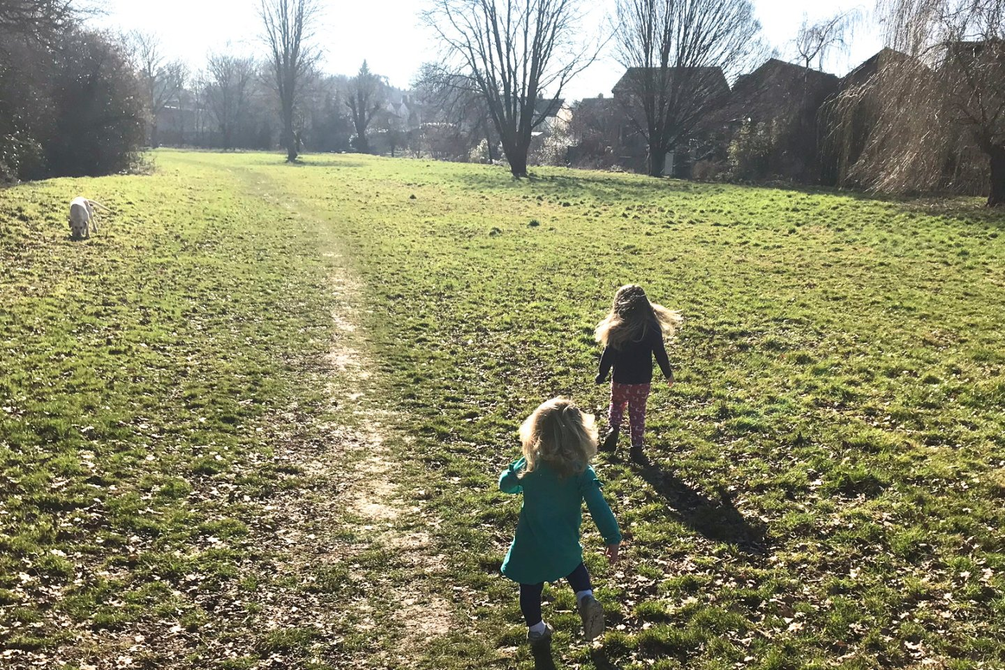 Two sisters running away from camera after a yellow labrador in the sunshine