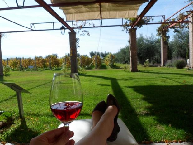 Alta vista 2011 rose malbec, lujan de cuyo, mendoza, argentina