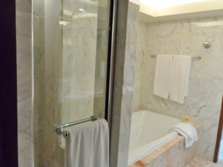Conrad Hong Kong Peak View shower