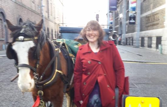 Dublin Horse Carriage wind