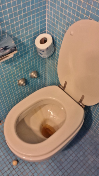 Sheraton Catania Hotel & Conference Center King Sea view Toilet stains