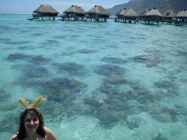 Hilton Moorea Lagoon Resort Overwater Bungalow Keri antlers
