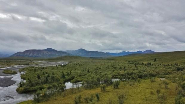 Denali National Park Katishna Experience Bus Tour Scenery