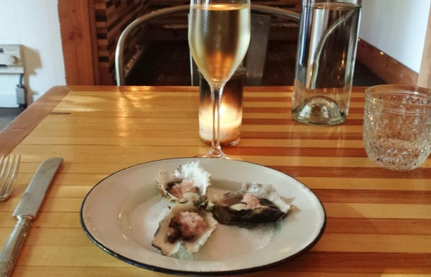 Thistle McMinnville Restaurants oysters