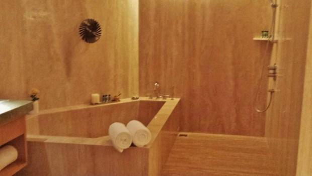 Park Hyatt Chennai Hotels Park Executive Suite bathtub shower