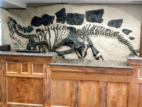 best western southwest denver dinosaur hotel front desk