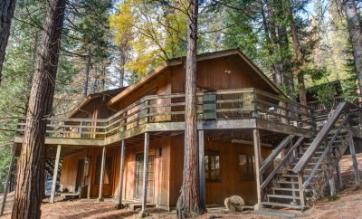 The redwoods cabin overview
