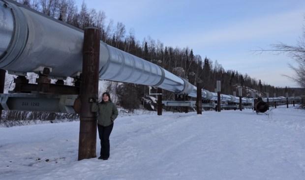 Keri trans-alaska pipeline viewing fairbanks