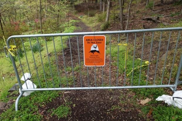 National Arboretum DC azalea path eagle closure