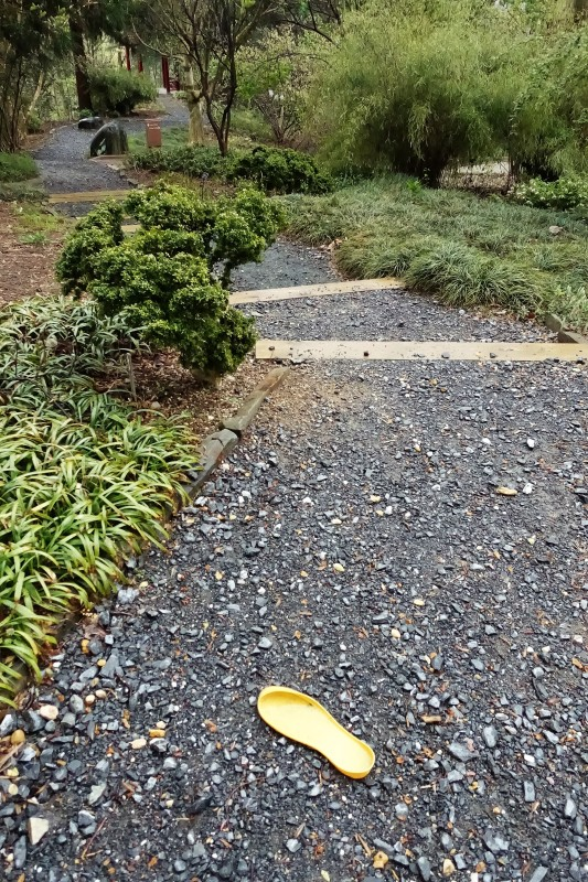 National Arboretum DC lost insole