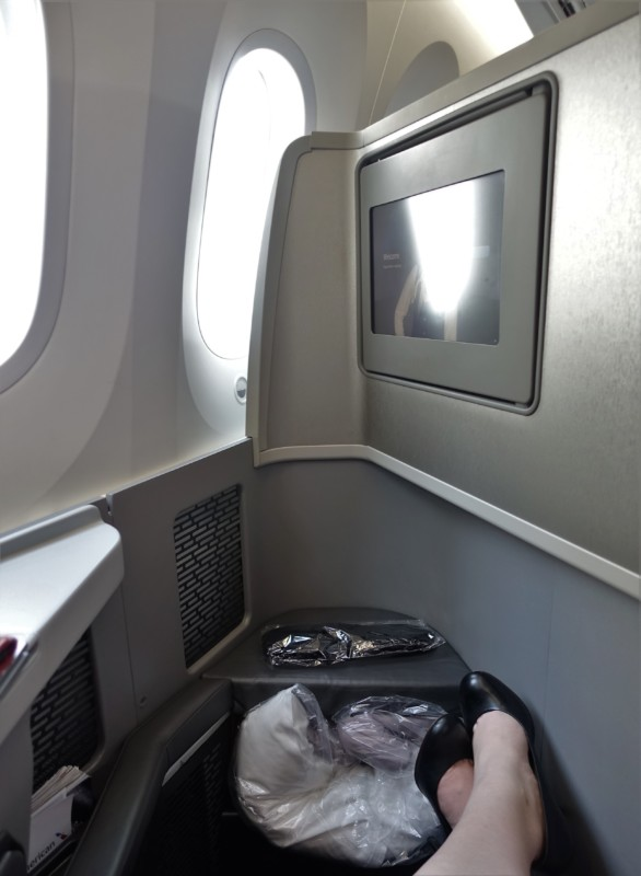american airlines business class 787 ord-nrt legroom