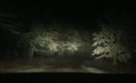 creepy house driveway