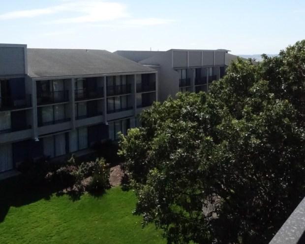 Doubletree Berkeley Marina Hotel Review Courtyard Horizon
