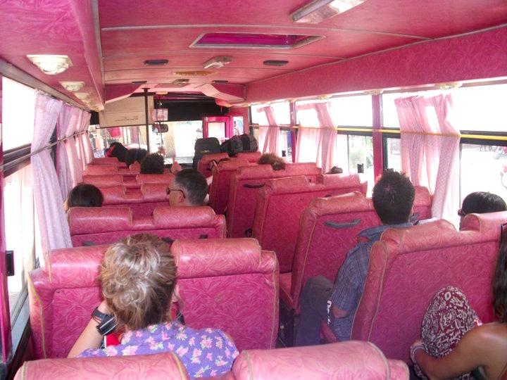 Pink VIP Bus, Cambodia