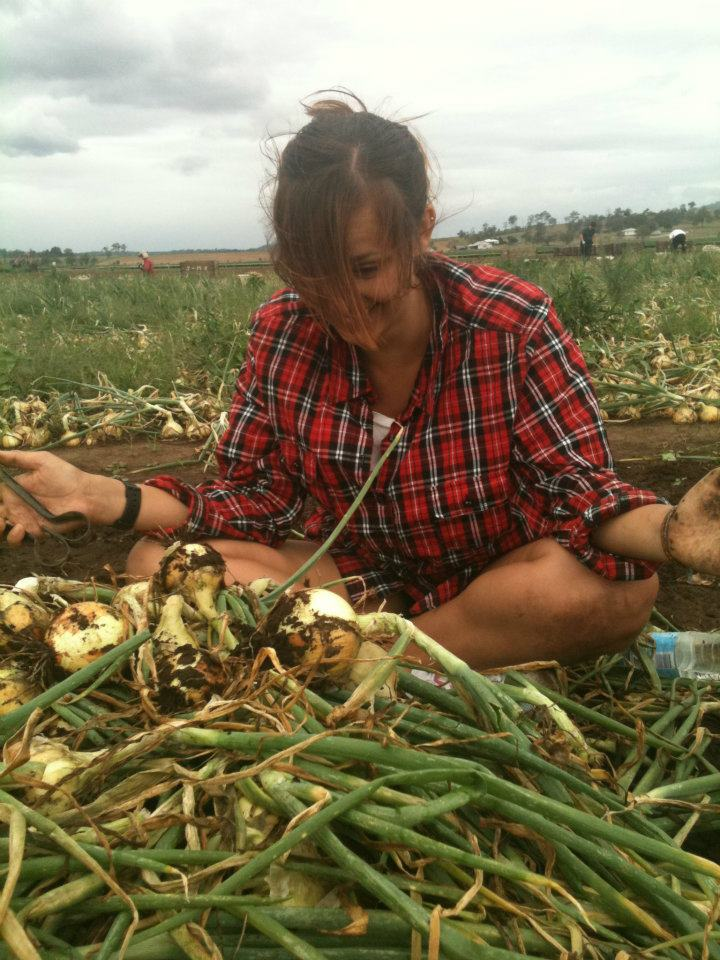 Working on an Onion Farm, Australia