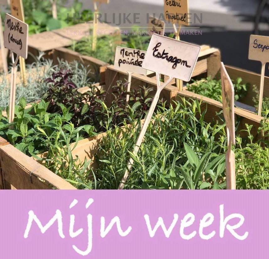 week 18 weekvlog heerlijke happen