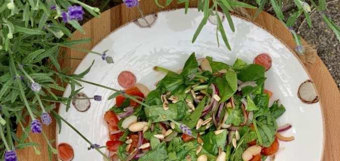 een Vegan switch lunch salade