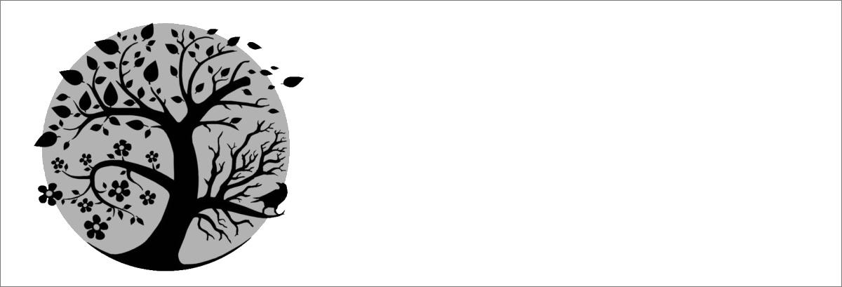 n23 - Leitura para Sukot: Kohelet
