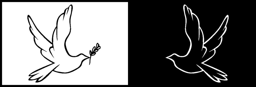 header pomba - Pomba Branca
