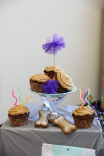 Bakery: bone-shaped cake and 6 cupcakes.