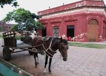064-pferdewagen