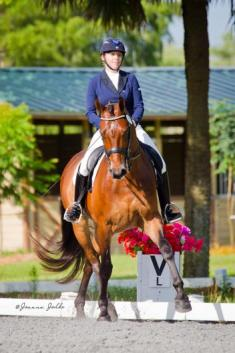 Heidi Degele Rides Benson HD to High Point with a 79.8% in the Prix St George (Photo: Joanna Jodko)