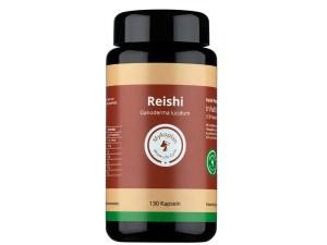 Reishi Bio Vitalpilz