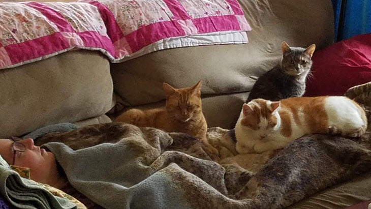 Heidi on the couch with the cats