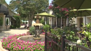 Click Here for the video on  Heidi Billotto's Patio Picks as seen on WCNC's Charlotte Today