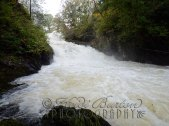 25th October 2013 - Swallow Falls, Betws-y-Coed