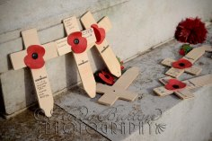 11th November 2013 - We will remember them