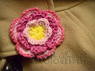 9th December 2013 - i think I'm getting addicted to crocheting flowers ....